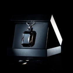 Bjorn van den Berg Fragile Pendant XL Silver Blackdiamond inbox