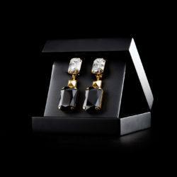 Bjorn van den Berg Maturity Earrings XL Gold Clear Black inbox