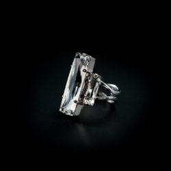 Bjorn van den Berg Decadence Ring Platinum Clear Thumb